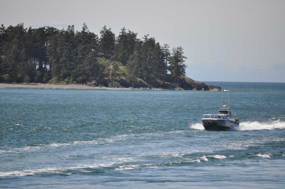 Island Whaler approaching pass