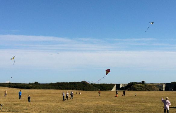 Kites fill the skies on a blustery day at Fort Casey Historical Park.